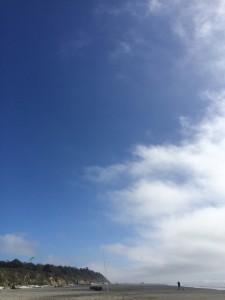 Kite flying high.